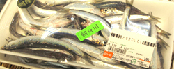 丸魚が売れるスーパー/魚好きが満足する店を目指し