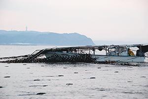 浮き流し式養殖場