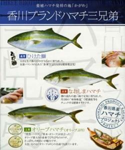 「ひけた鰤」「なおしまハマチ」「オリーブハマチ」香川の3つのブランド魚。特製ポスターで大きくPRする。
