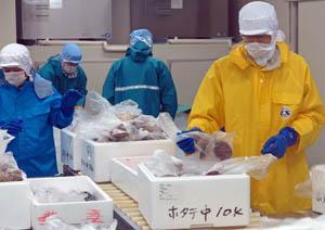 「羽田市場」は加工施設も設けている