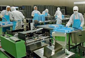 衛生的なHACCP認定加工場