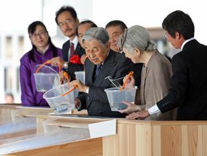 イサキとイシダイの稚魚を放流する天皇・皇后両陛下(代表撮影)