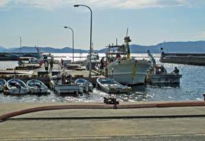 競争力強化へ機能分担が進む漁港